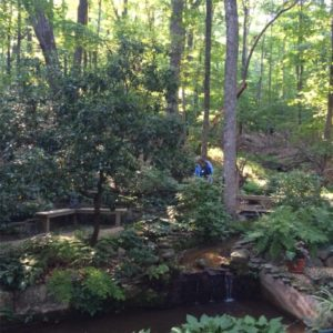 The gardens surrounding the Plummer cabin owned by Becca and Jim Weck simply call for peace and reflection.