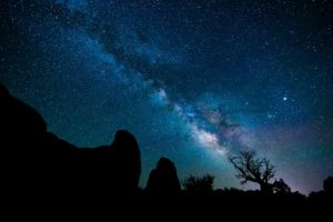 Tree and Milky Way, Arches National Park, photographed by David Akoubian